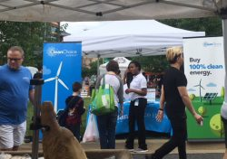 Promoting the purchase of clean energy