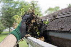 Cleaning gutters reduces mosquitos