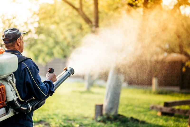 Person spraying pesticides in air