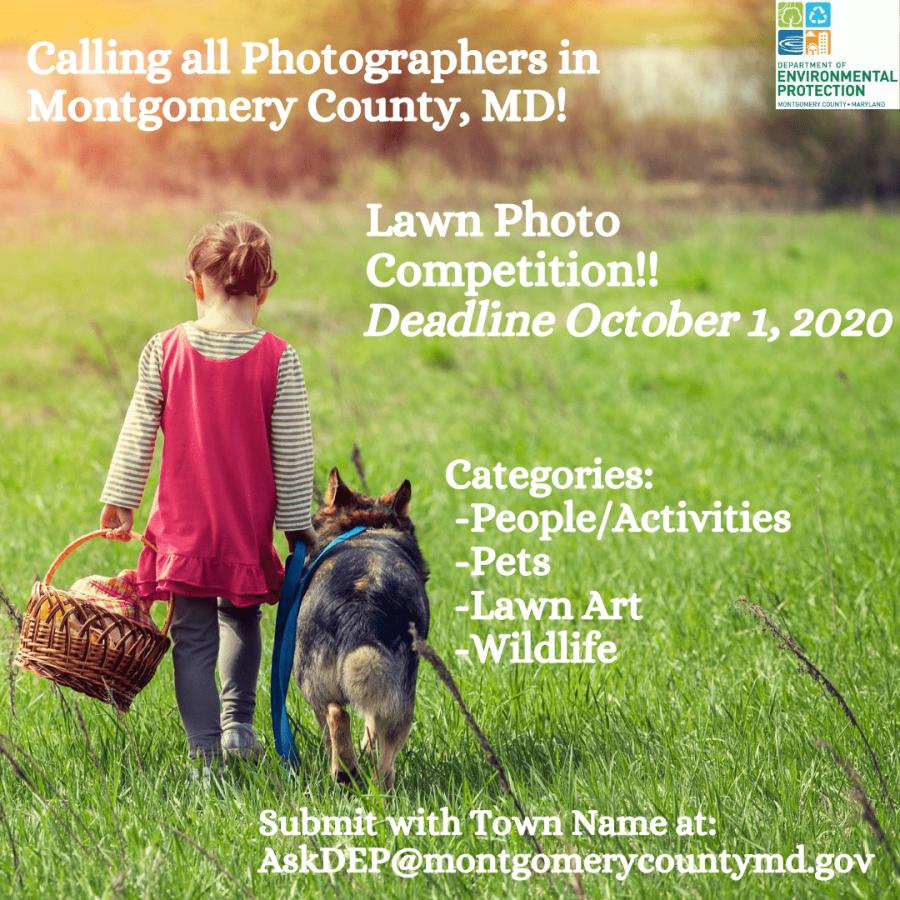 Lawn Image Contest Info