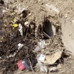 trash pollution
