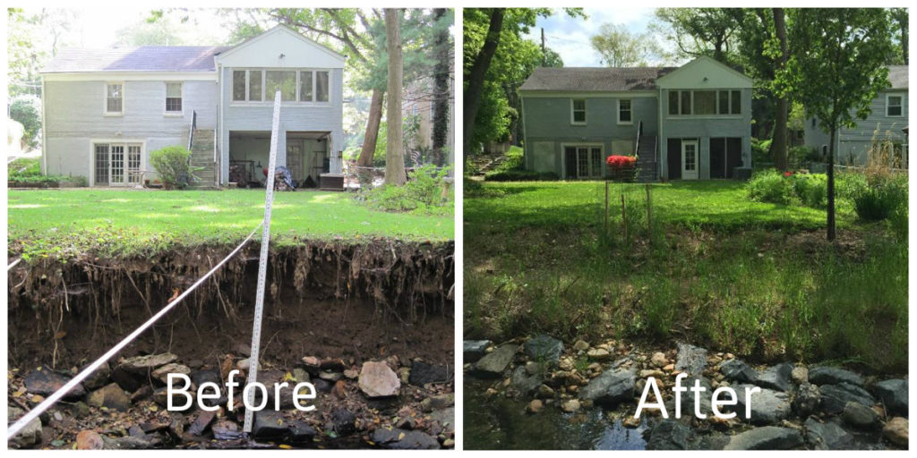 Before and after photos showing an eroded stream bank being gradated and planted to form a riparian buffer